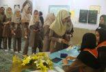 محیسن : انتخابات شورای دانش آموزی، اولین گام تمرین دمکراسی است