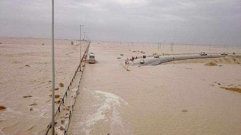 بیشترین خسارت سیلاب به اراضی کشاورزی دشتی و دیر وارد شد