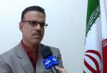 تب کنگو تاکنون در بوشهر مشاهده نشده است