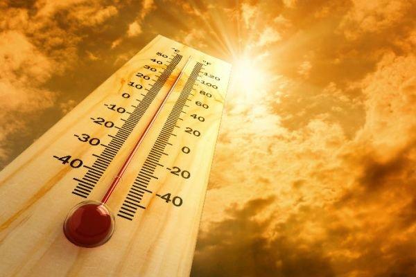دمای ۵۰ درجهای هوا در استان بوشهر/ رطوبت افزایش مییابد