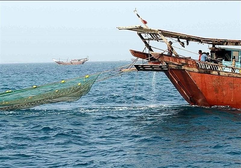 صید میگو از بامداد ۷ شهریور در آبهای استان ممنوع است