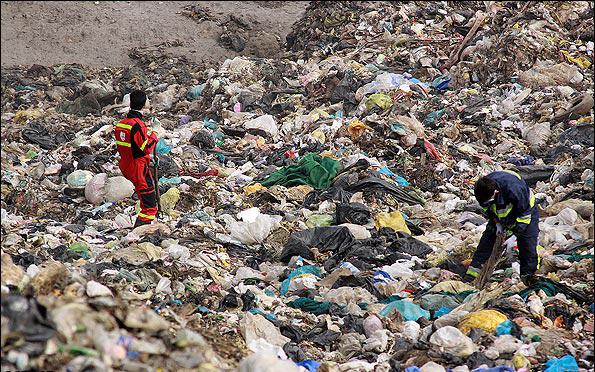 زندگی در مرتع زباله